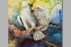 Papagaai 50 x 70 acryl op linnen