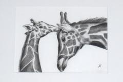 Giraffe 30x40 conte op papier